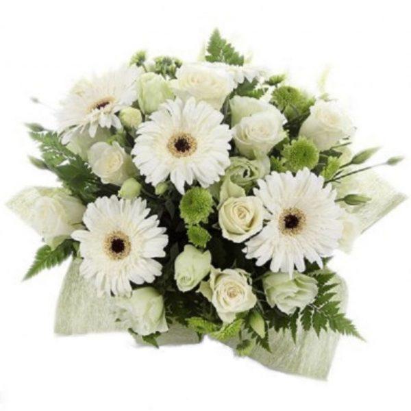 Gerbera Delight - Home of Flowers