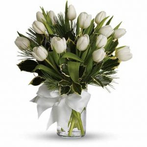 White Velvet – Flowers in Westcliff