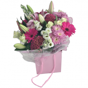 Celosia Dance –Flowers in Southend on Sea– A Wonderful Selection of Cerise Gerbera, Celosia with Lisianthus & Lilliesall hand tied in a water bubble & presented in a gift bag making a perfect gift for any occasion
