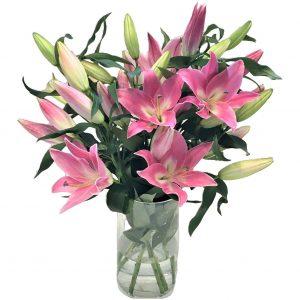 Pink Lily Vase