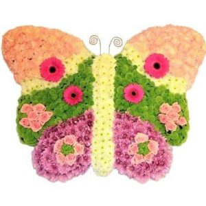 Funeral Butterfly in Westcliff